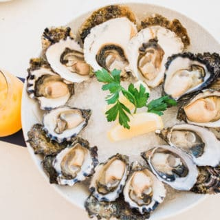 Oysters at Sydney Cove Oyster Bar